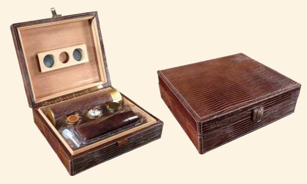 The Alligator 'Brown' Humidor...20 Ct.